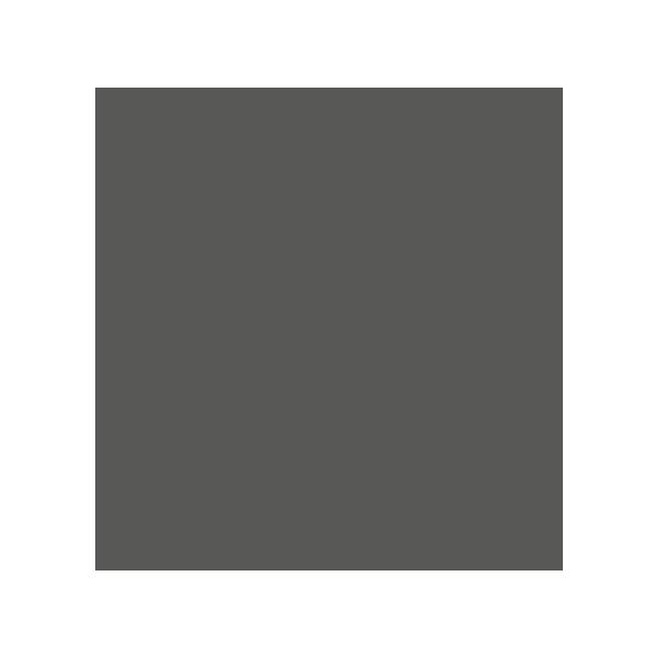 Concello de Ames